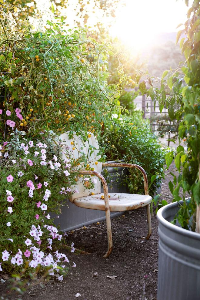 18 cách cực hay mà đơn giản để làm mới sân vườn nhà bạn - Ảnh 12.