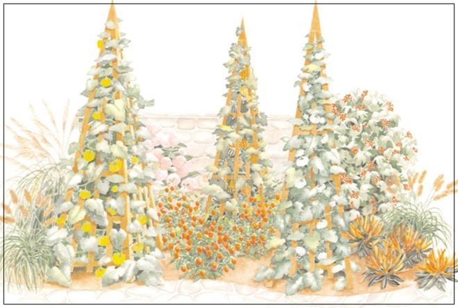 Những thiết kế đẹp bạn có thể học tập để tạo sân vườn xinh tại nhà - Ảnh 8.