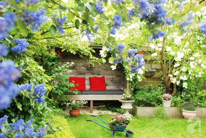 Khu vườn hoa nở suốt bốn mùa đẹp như trong mơ của đạo diễn Nguyễn Hải Anh - Ảnh 4.