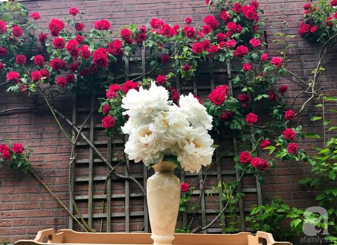 Khu vườn hoa nở suốt bốn mùa đẹp như trong mơ của đạo diễn Nguyễn Hải Anh - Ảnh 27.