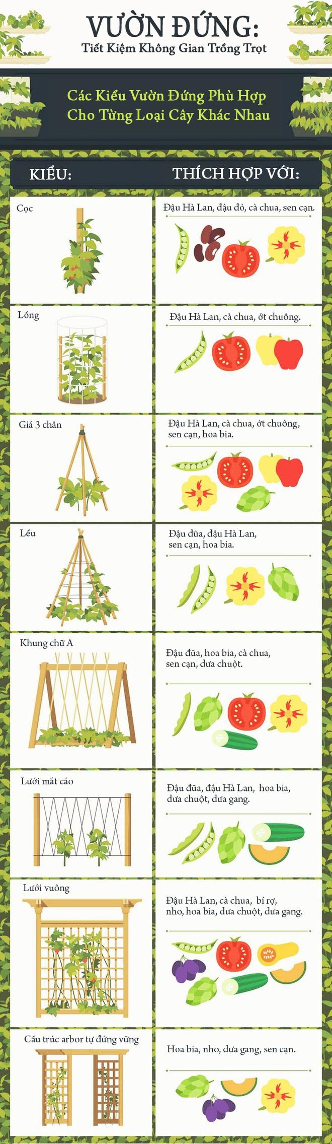 Vườn đứng: Giải pháp hoàn hảo trong không gian nhỏ - Ảnh 1.