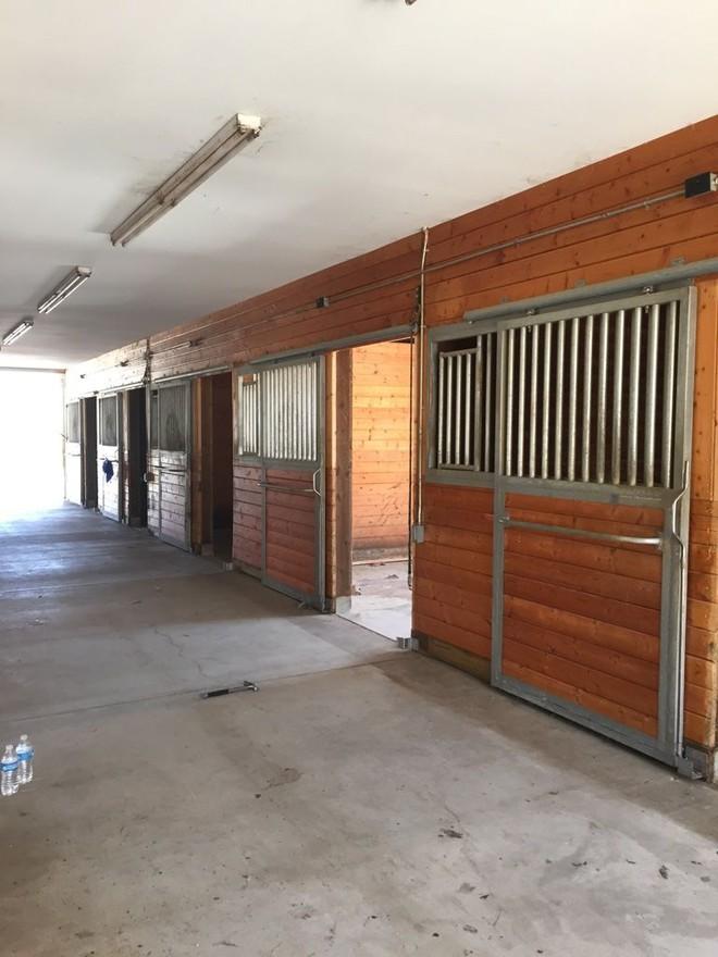 Chuồng ngựa cũ biến hình thành ngôi nhà trắng đẹp như mơ - Ảnh 4.