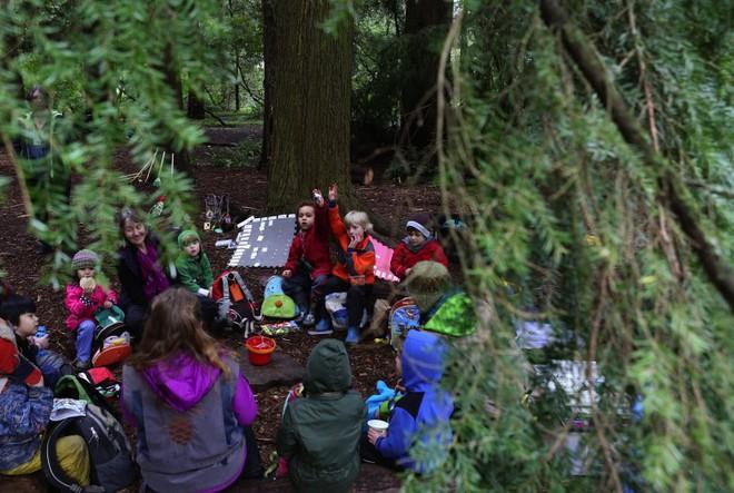 Chơi đùa và leo trèo trong rừng - Đây là cách trẻ em Đức đi học mẫu giáo - Ảnh 4.