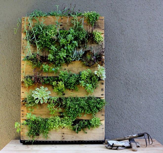 Bạn đã biết đến 13 ý tưởng trồng cây xanh từ đồ vật cũ để trang trí nhà cực đẹp mắt chưa? - Ảnh 1.