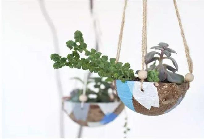 Bạn đã biết đến 13 ý tưởng trồng cây xanh từ đồ vật cũ để trang trí nhà cực đẹp mắt chưa? - Ảnh 8.