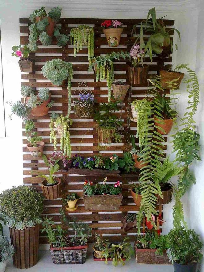 Bạn đã biết đến 13 ý tưởng trồng cây xanh từ đồ vật cũ để trang trí nhà cực đẹp mắt chưa? - Ảnh 9.