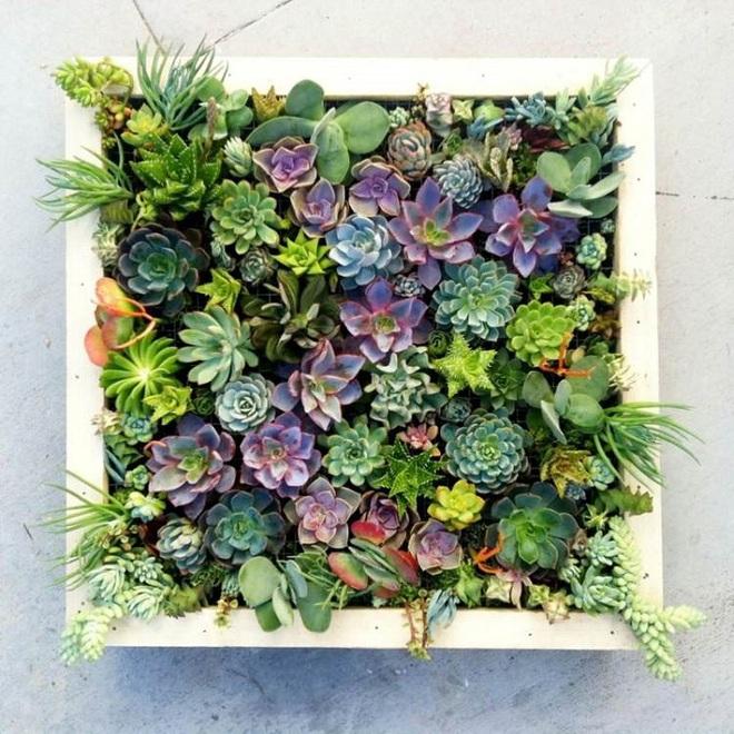 Bạn đã biết đến 13 ý tưởng trồng cây xanh từ đồ vật cũ để trang trí nhà cực đẹp mắt chưa? - Ảnh 10.