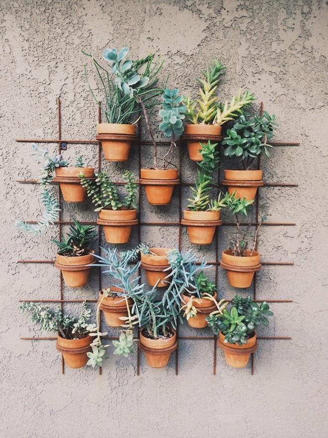 Bạn đã biết đến 13 ý tưởng trồng cây xanh từ đồ vật cũ để trang trí nhà cực đẹp mắt chưa? - Ảnh 13.