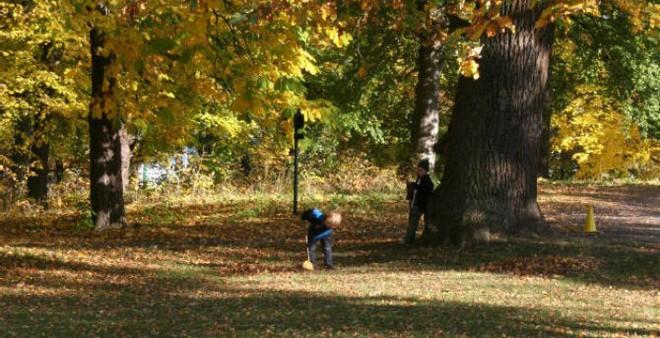 Đến công chúa Hoàng gia thì tiêu chí chọn trường mầm non cho con vẫn là rợp bóng cây như công viên - Ảnh 19.