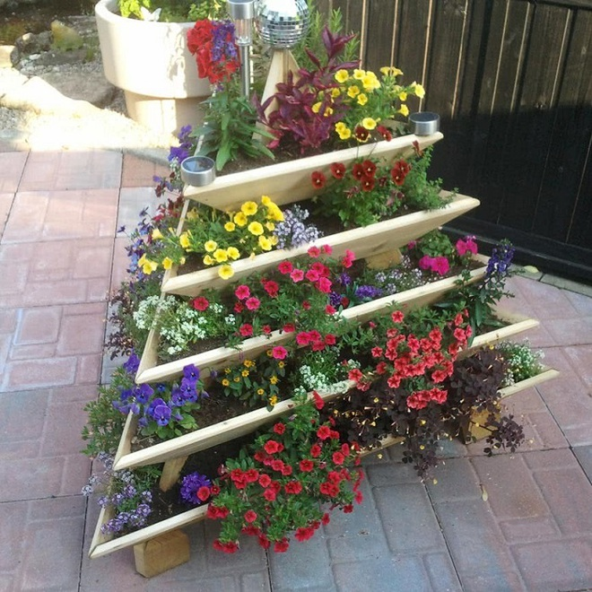 Không cần là người làm vườn giỏi bạn vẫn có thể trang trí sân vườn ấn tượng như thế này - Ảnh 3.