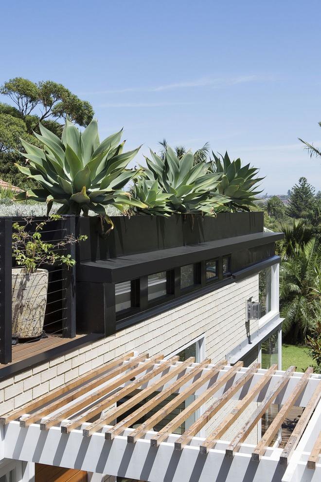 Ngôi nhà mái bằng trang trí theo phong cách hiện đại với điểm nhấn là mái nhà phủ đầy cây xanh - Ảnh 9.