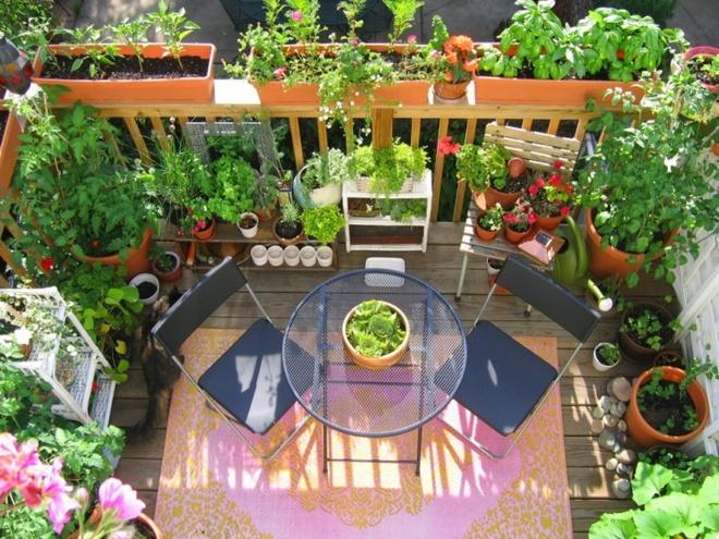 Ban công nhỏ biến thành khu vườn xanh mát đẹp hút ánh nhìn với những ý tưởng đơn giản không ngờ - Ảnh 26.