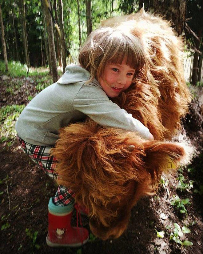Đâu chỉ chó mèo mới có lông xù đáng yêu, những chú bê con này sẽ khiến bạn thích ngay lập tức - Ảnh 25.