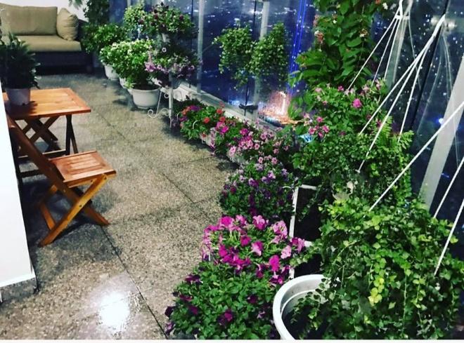 Ban công trên cao rực rỡ sắc hoa và rau sạch của diễn viên Thân Thúy Hà - Ảnh 2.