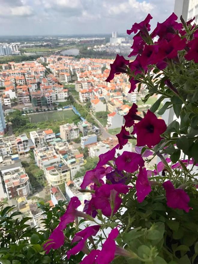 Ban công trên cao rực rỡ sắc hoa và rau sạch của diễn viên Thân Thúy Hà - Ảnh 6.