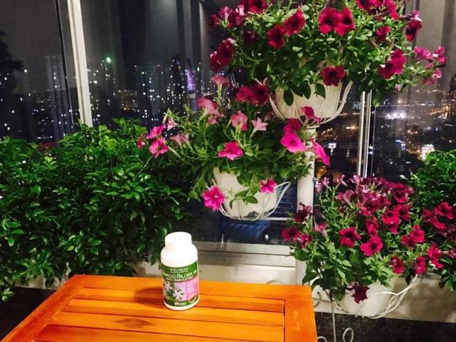 Ban công trên cao rực rỡ sắc hoa và rau sạch của diễn viên Thân Thúy Hà - Ảnh 7.