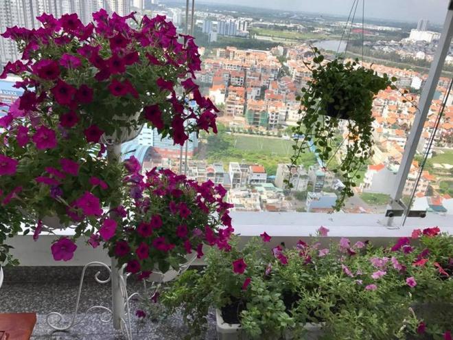 Ban công trên cao rực rỡ sắc hoa và rau sạch của diễn viên Thân Thúy Hà - Ảnh 8.