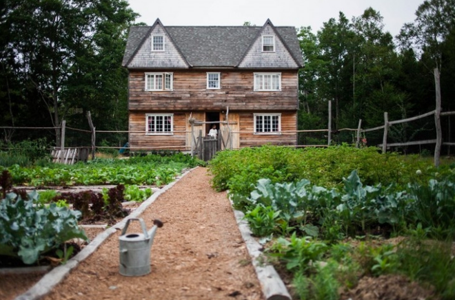 5 bước cơ bản bạn cần biết nếu muốn trồng một khu vườn rau quả xanh tươi, đẹp mắt - Ảnh 5.