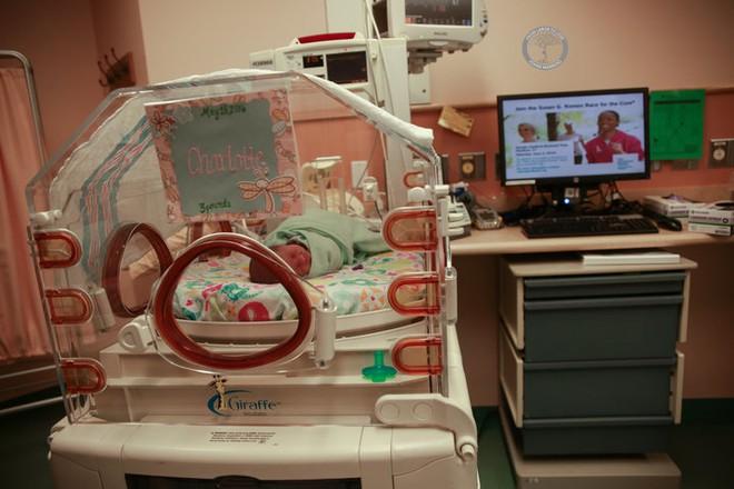 Bộ ảnh ngọt lịm tim của 3 bé sinh ba tự nhiên hiếm gặp trên thế giới - Ảnh 5.