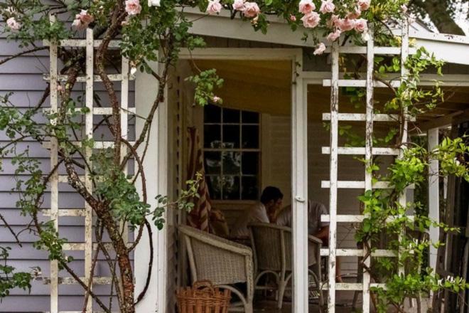 Kinh nghiệm tạo giàn hoa leo đẹp như trong mơ của cặp vợ chồng yêu hoa - Ảnh 1.