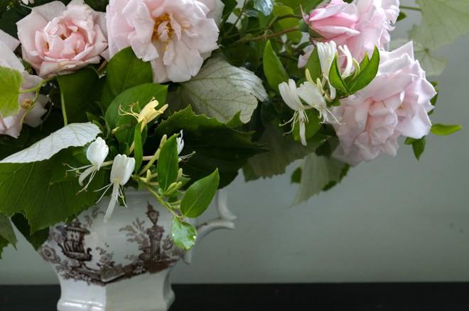 Kinh nghiệm tạo giàn hoa leo đẹp như trong mơ của cặp vợ chồng yêu hoa - Ảnh 9.