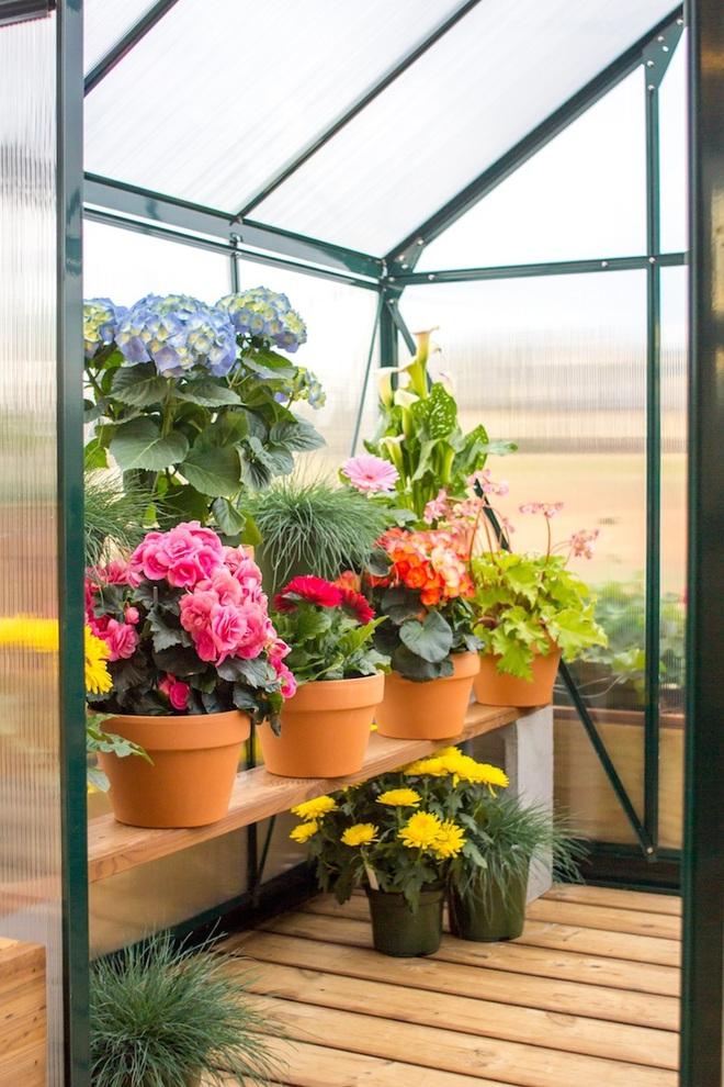 Bạn đã biết gì chưa: Giấc mơ về ngôi nhà nhỏ di động có nhà kính trồng hoa đã không còn khó thực hiện - Ảnh 13.