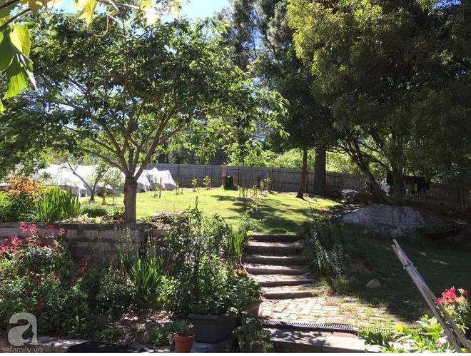 Nàng dâu Việt ở Úc tự tay cải tạo mảnh đất gần 2000m² thành khu vườn rực rỡ sắc hoa và rau quả - Ảnh 2.