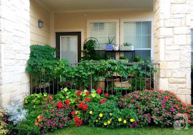 Nữ du học sinh Việt tại Mỹ tiết lộ bí quyết tạo khu vườn mini 6m² nhưng đủ rau và hoa đẹp hút hồn - Ảnh 2.