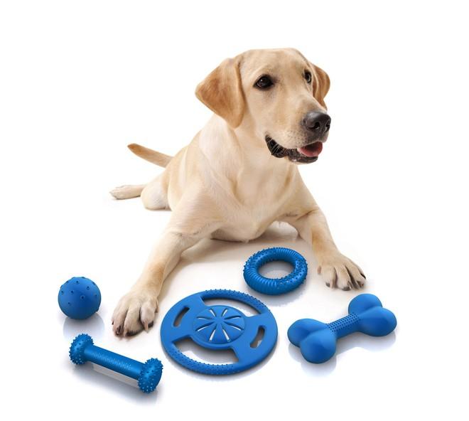 Những món đồ chơi chẳng tốn tiền mua, lại có ngay trong nhà mà đứa trẻ nào cũng mê tít - Ảnh 10.