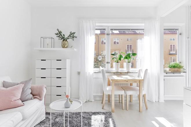 Chỉ 28m² nhưng căn hộ màu trắng này vừa đẹp không tì vết vừa đủ đầy đến hiếm có khó tìm - Ảnh 3.