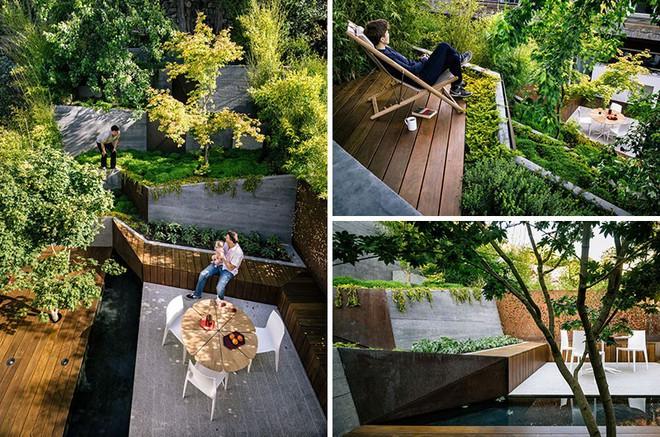 Sau cải tạo, sân vườn kiểu ruộng bậc thang này khiến ai cũng tròn mắt ngưỡng mộ - Ảnh 1.
