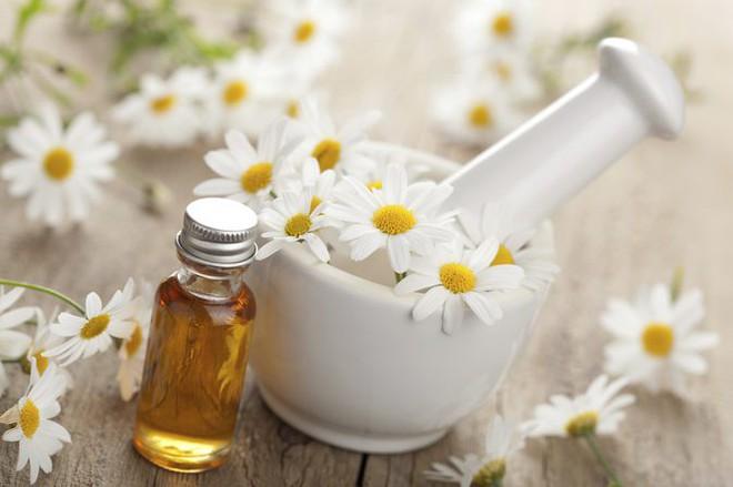 9 loại tinh dầu tự nhiên có hiệu quả chống thâm, giảm nhăn rõ rệt với giá thành lại hợp lý hơn cả kem mắt - Ảnh 2.