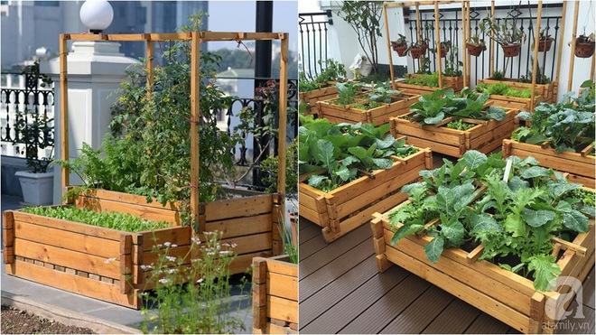 Trồng rau trong khung gỗ - giải pháp vừa có rau sạch để ăn lại vừa có khu vườn đẹp - Ảnh 20.