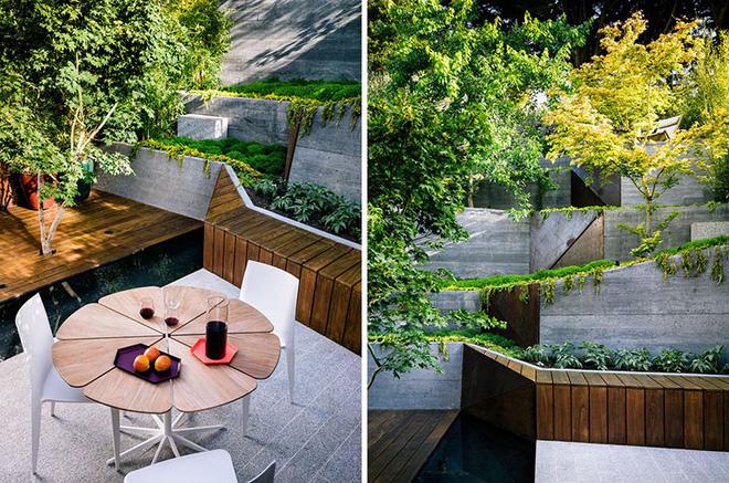 Sau cải tạo, sân vườn kiểu ruộng bậc thang này khiến ai cũng tròn mắt ngưỡng mộ - Ảnh 5.