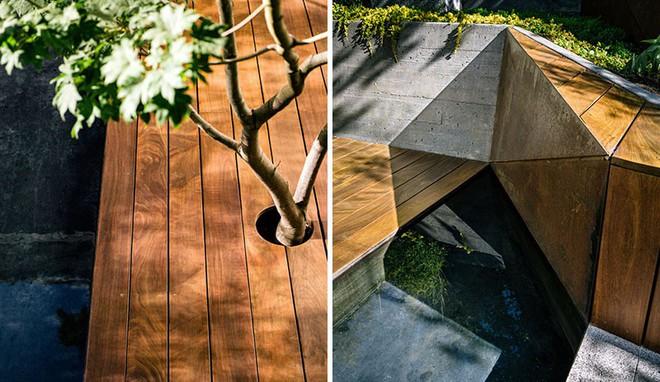 Sau cải tạo, sân vườn kiểu ruộng bậc thang này khiến ai cũng tròn mắt ngưỡng mộ - Ảnh 8.