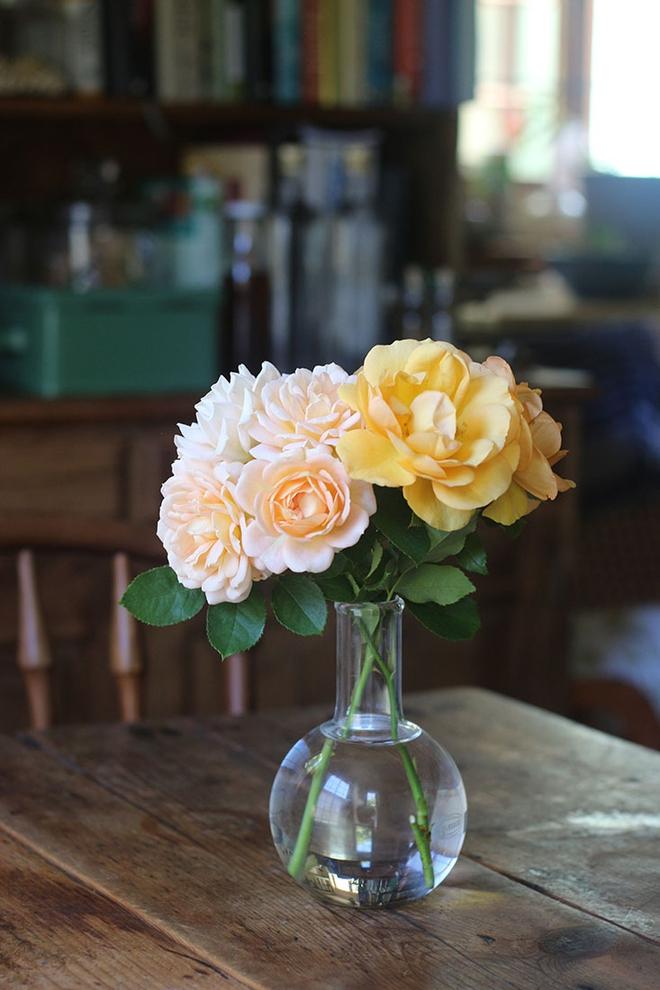 Khu vườn địa đàng của cụ bà 83 tuổi đã dành 33 năm để thỏa mãn tình yêu với cây và hoa - Ảnh 12.