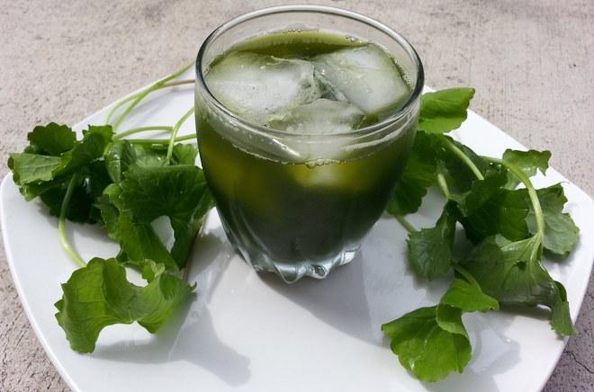 Những kiểu uống nước rau má mùa hè giải nhiệt sai cách có thể khiến bạn mất mạng - Ảnh 3.