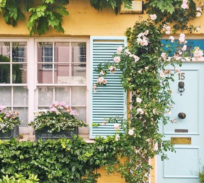 Ngây ngất với những ngôi nhà có khung cửa rộn ràng hoa lá đón xuân về - Ảnh 3.