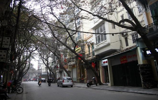 Sáng 29 Tết, nhiều tuyến phố Hà Nội đã vắng bóng người qua lại - Ảnh 16.