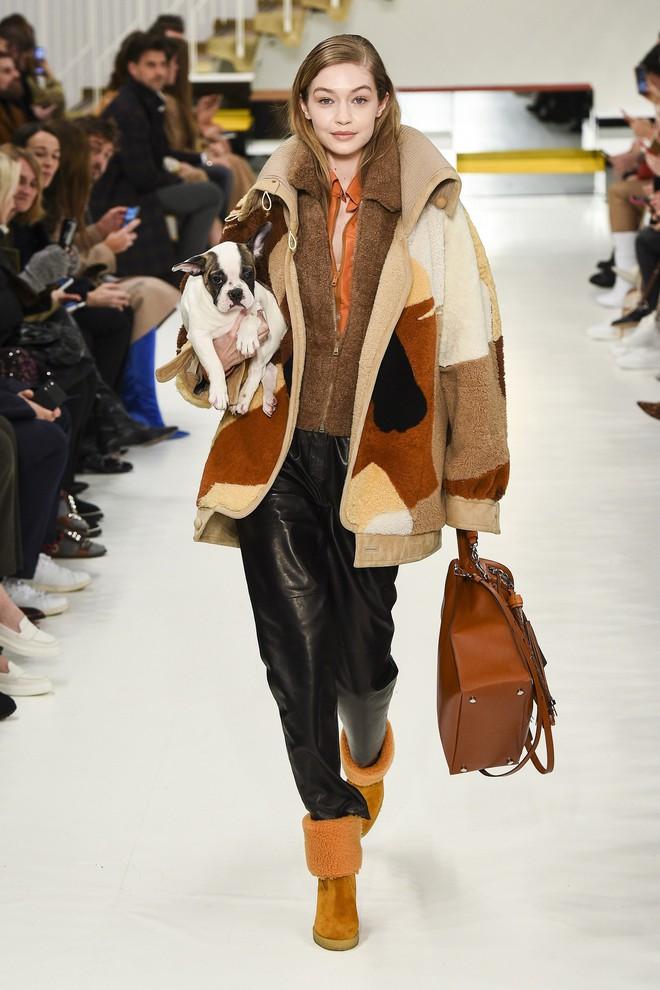 Tuần lễ thời trang Milan: Người mẫu vừa catwalk vừa bế trên tay 1 chú tiểu Tuất cực đáng yêu - Ảnh 1.