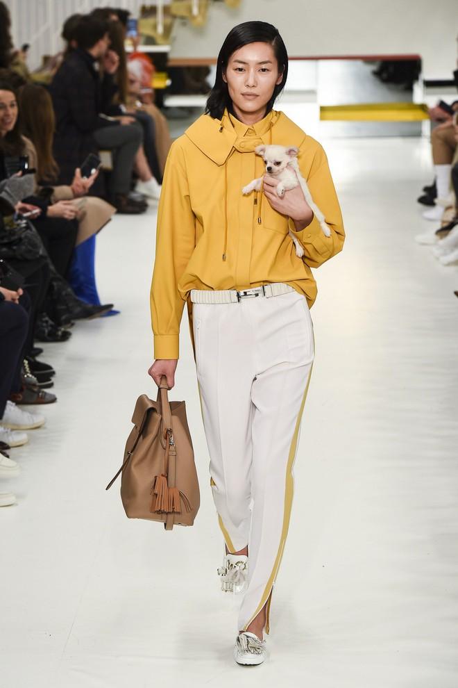Tuần lễ thời trang Milan: Người mẫu vừa catwalk vừa bế trên tay 1 chú tiểu Tuất cực đáng yêu - Ảnh 2.
