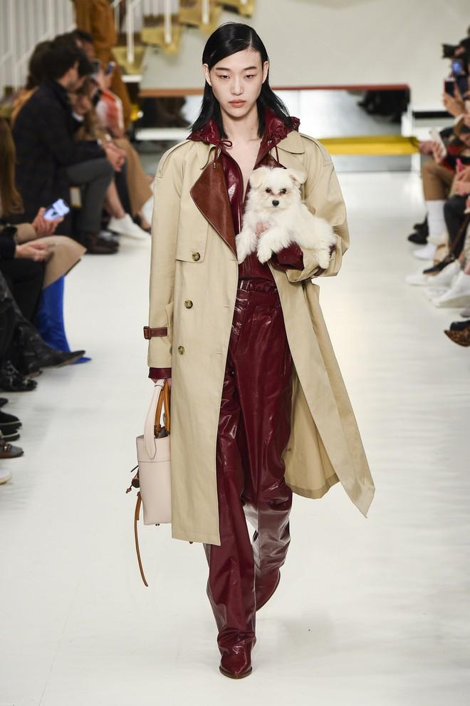 Tuần lễ thời trang Milan: Người mẫu vừa catwalk vừa bế trên tay 1 chú tiểu Tuất cực đáng yêu - Ảnh 4.