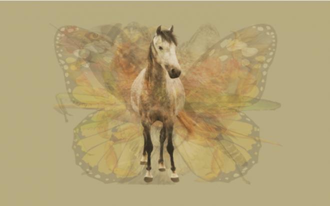 Nhìn vào bức tranh này đi, con vật đầu tiên mà bạn nhìn thấy sẽ bật mí đặc điểm thú vị về tính cách của bạn - Ảnh 2.