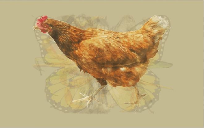 Nhìn vào bức tranh này đi, con vật đầu tiên mà bạn nhìn thấy sẽ bật mí đặc điểm thú vị về tính cách của bạn - Ảnh 3.