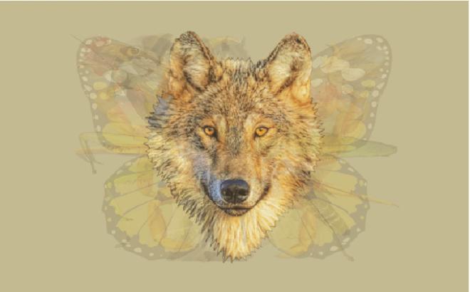 Nhìn vào bức tranh này đi, con vật đầu tiên mà bạn nhìn thấy sẽ bật mí đặc điểm thú vị về tính cách của bạn - Ảnh 6.