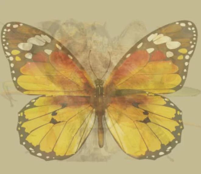Nhìn vào bức tranh này đi, con vật đầu tiên mà bạn nhìn thấy sẽ bật mí đặc điểm thú vị về tính cách của bạn - Ảnh 9.