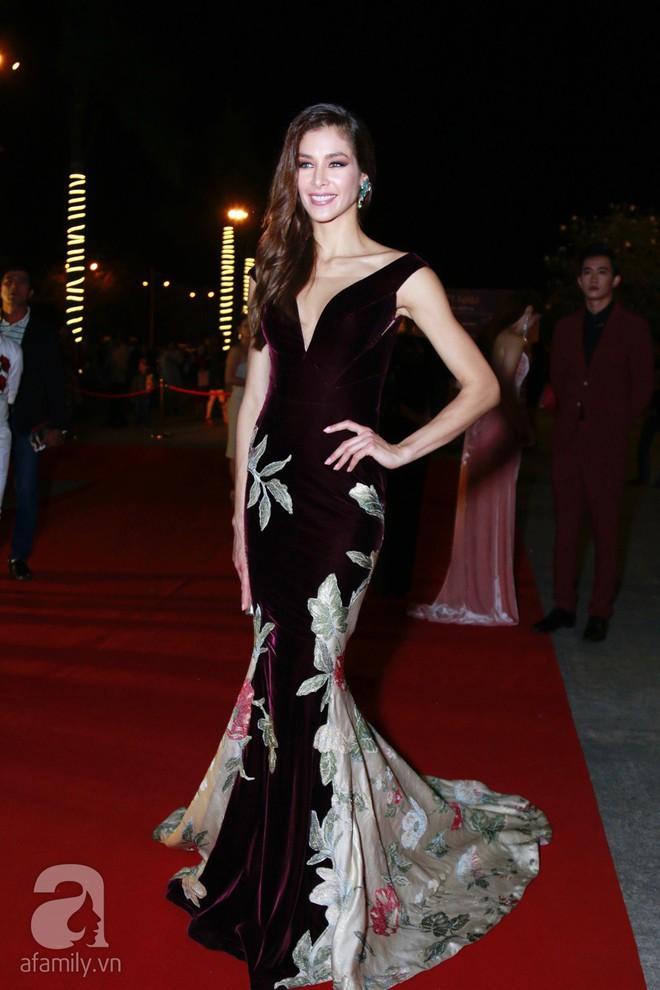 Hoa hậu Hoàn vũ 2008 Dayana Mendoza khoe vẻ đẹp tuyệt sắc, Mai Phương Thúy lộng lẫy như công chúa trên thảm đỏ chung kết Hoa hậu Hoàn vũ Việt Nam - Ảnh 2.