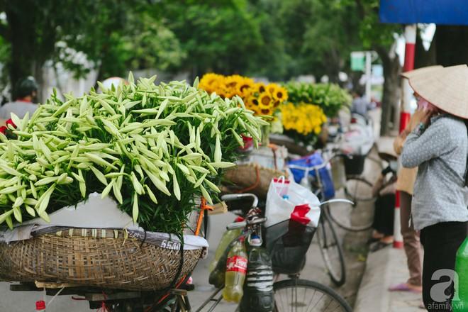 Hoa loa kèn trắng tinh khôi đã về trên phố Hà Nội, chị em nhanh tay mua kẻo hết mùa - Ảnh 5.