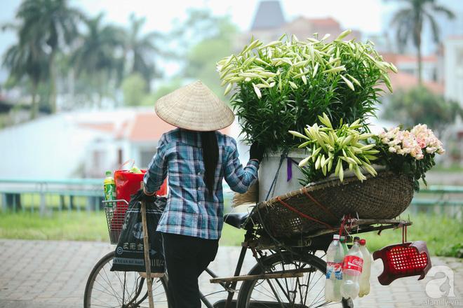 Hoa loa kèn trắng tinh khôi đã về trên phố Hà Nội, chị em nhanh tay mua kẻo hết mùa - Ảnh 11.