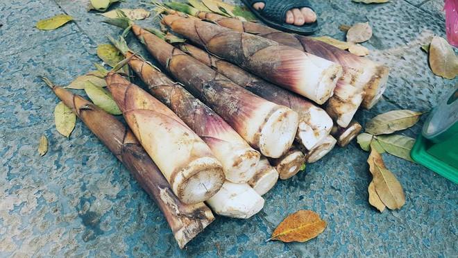 4 loại rau củ đắng ơi là đắng nhưng chế biến thành món ăn thì ngon miễn chê - Ảnh 5.